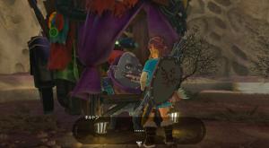 Skull's left eye【Shrine Challenge 27|The Legend of Zelda Breath of the Wild】